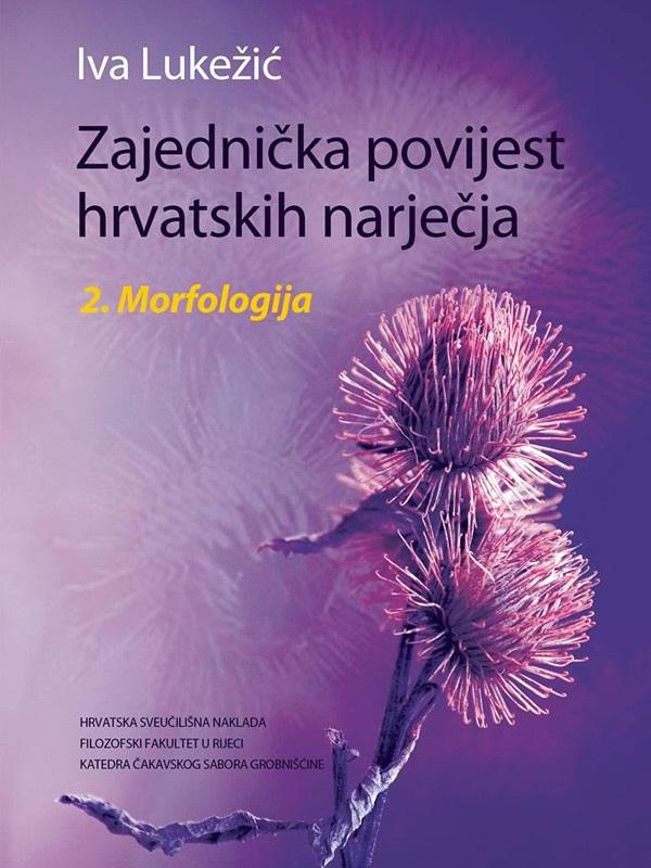 Zajednička povijest hrvatskih narječja - 2. Morfologija